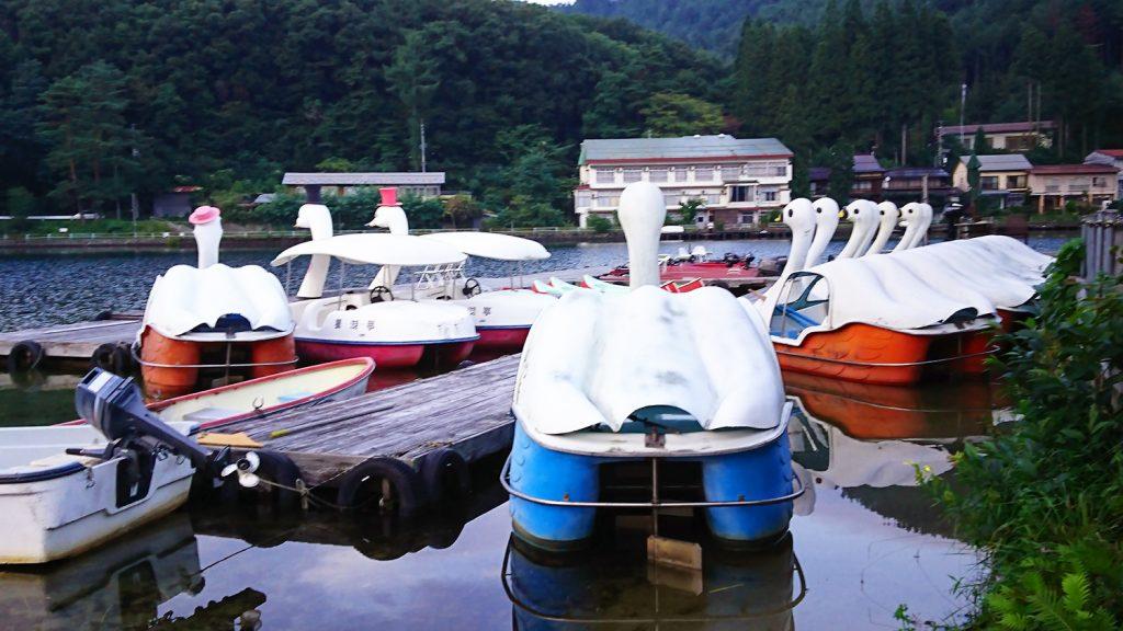 木崎湖の白鳥ボート