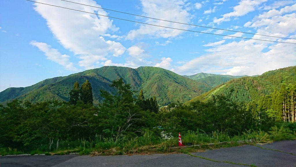 倉嶋果樹園の現場